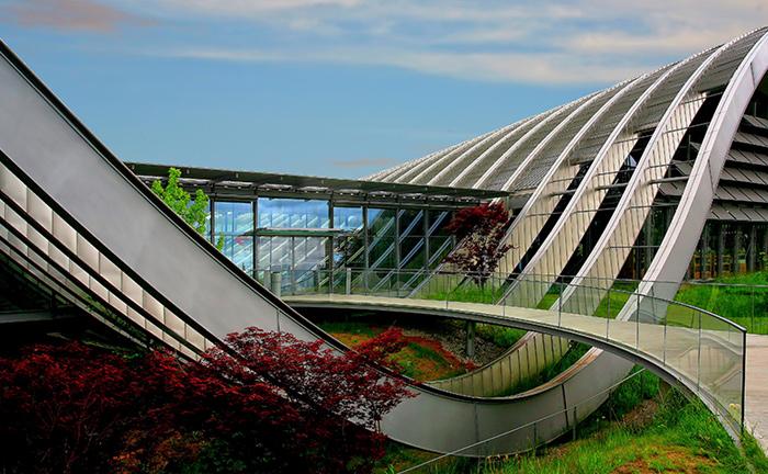 תואר הנדסאי אדריכלות נוף - מכללה טכנולוגית שנקר הנדסאים