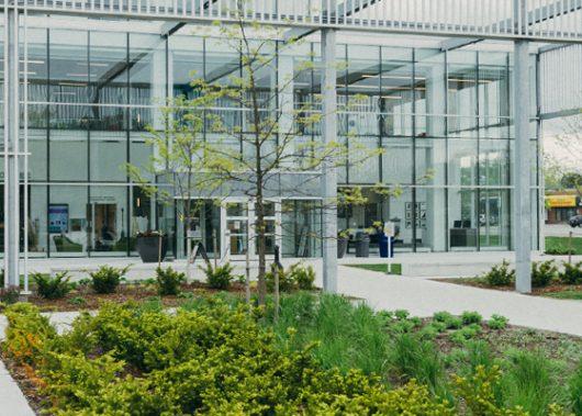הנדסאי אדריכלות נוף - מכללה טכנולוגית שנקר הנדסאים